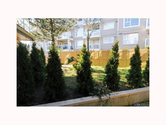 # 114 22277 122ND AV - West Central Apartment/Condo for sale, 1 Bedroom (V817227) #9
